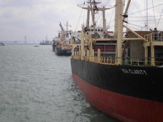 Discharging Survey Bulk Cargo